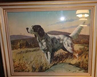 Vintage Setter Dog Hunting Dog Litho/ Signed
