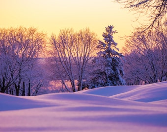 Winter Wonderland ~ Warwick Country Club, Warwick Neck, Rhode Island, Sunset, Art, Artwork, Photograph, New England, Snow, Winter Scenes