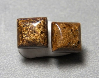 10mm Square Bronzite Gemstone Post Earrings with Sterling Silver