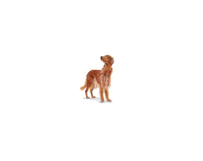 Print of Miniature painting of a Irish Setter, tiny painting Irish Setter Dog art 5 x 5