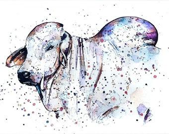 """Brahman"""" Print Watercolour A3 (30*40cm/16*12 Inches)"""