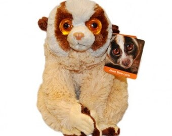 Slow Loris Plushie Cuddly Toy - The Best Way to have a your very own Slow Loris