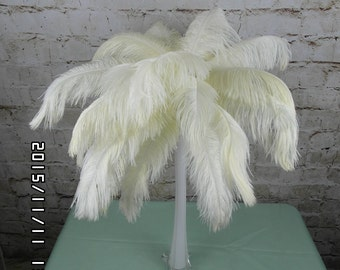 50pcs Ivory white Ostrich Feather Plume for Wedding centerpieces Samba accessories