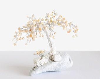 20 cm perlen bonsai kiefer baum wulstige orientalische baum. Black Bedroom Furniture Sets. Home Design Ideas