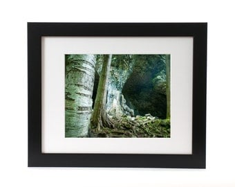 "11x14 ""Cave Excursion"" Framed/Matted Print"