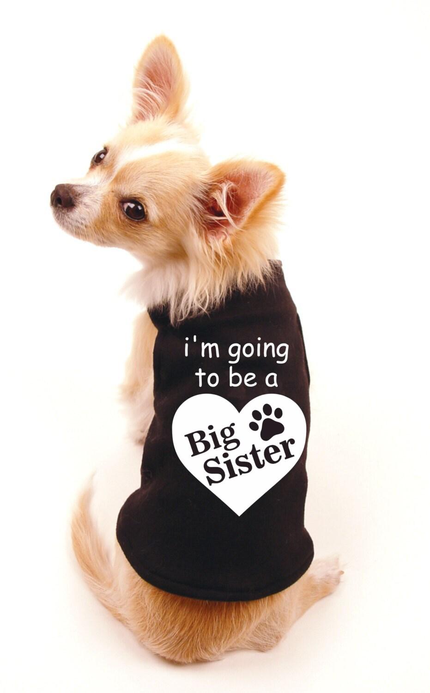 Big Sister Tshirt For Cat