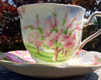 Royal Albert Blossom Time Teacup and Saucer