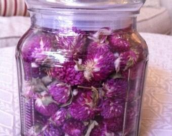 Organic Globe Amaranth Flower Tea In A Glass Reusable Jar