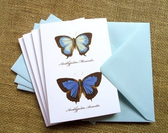 Set of 4 Cards - Romantic Series - Butterflies - Inspired by W.C. Hewitson