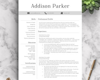 Professional Resume Template for Word and Pages (1, 2 and 3 Page Resume  Templates
