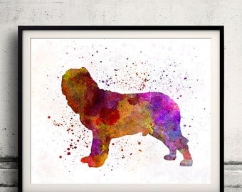 Napolitan Mastiff 01 in watercolor - Fine Art Print Poster Decor Home Watercolor Illustration Dog - SKU 2018