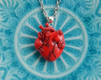 Anatomical heart necklace Real heart necklace Be my valentine Valentines day gift Girlfriend present Red clay necklace Christmas gift
