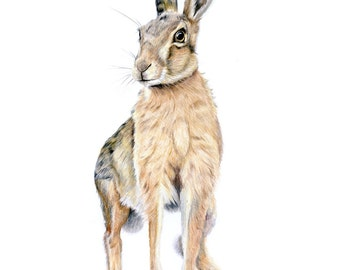Hare Today - Gone Tomorrow! Print