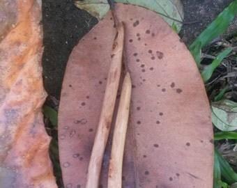 tree needles ~ handcarved gum wood knitting needles ~ 8mm