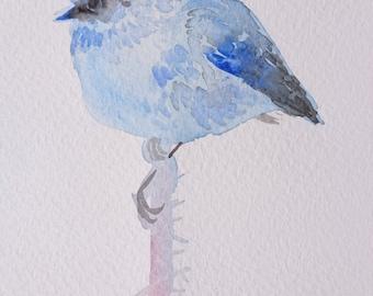 little bird watercolor