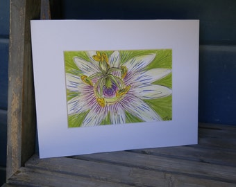 Passion: Purple Passion Flower Artwork, Matted