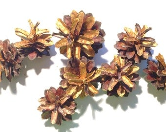 Bulk Pine Cones, Gold Pine Cones, Christmas Wreath Supplies, Gold Pine Cones Christmas Decoration