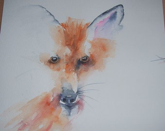Watercolour study of Australian Fox