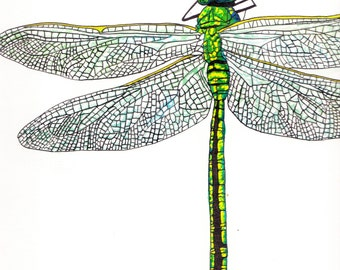 A5 Dragonfly Greetings Card