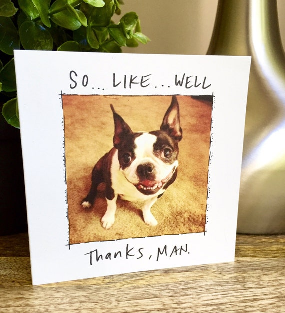Funny thank you card, Thanks man, Boston Terrier card, Boston Terrier thank you, funny dog card, dog thank you card, handwritten