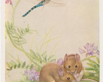 Vintage Postcard, Noel Hopking, Mouse, Mice, Illustration, Retro, Birthday Card, Wildlife