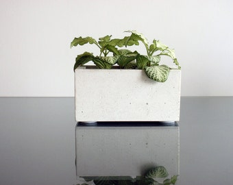 Concrete Planter for Succulent and Cactus Plants, Urban Home Decor Modern Planter, Flower pot, Concrete pot, Cactus planter
