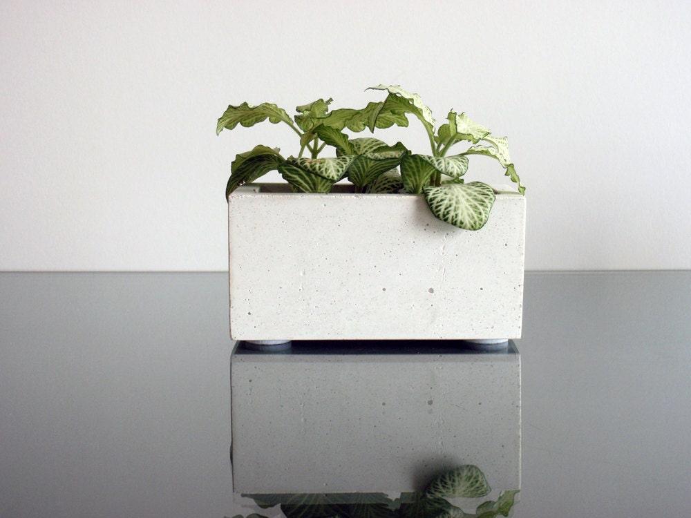 jardini re en b ton pour les succulentes et plantes de cactus. Black Bedroom Furniture Sets. Home Design Ideas