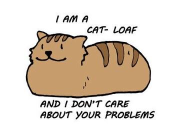 Striped cat loaf