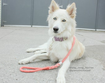 Ombre Rope Leash