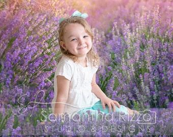 Digital Photography Background - Lavender Field Backdrop (Set of 3)