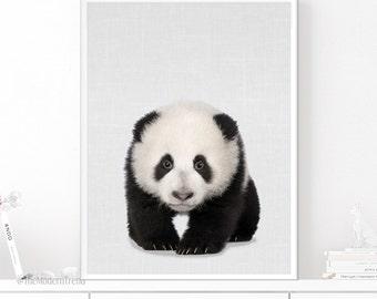 Panda Wall Art, Panda Print, Bear Wall Art, Bear Print, Bear Photo, Animal Photography, Nursery Animal, Wall Art Print, Instant Download