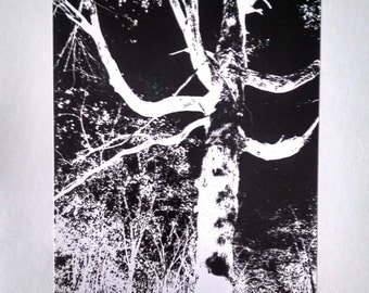 Original Black and White Ink Tree