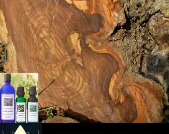Lotus House Rosewood - Essential Oil