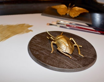 Insect Home Decor, Gold Faux Beetle Taxidermy, Wall Art, Home Decor