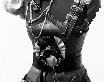 Amazing Rich Steampunk dress set