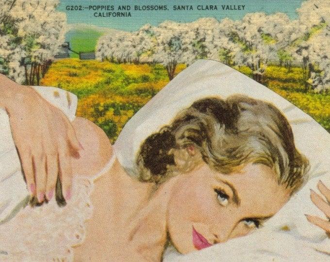 Yellow California Poppy Art, Flower Collage, Dreamy Landscape