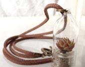 Living, miniature, succulent, terrarium, long, leather chain necklace.