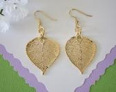 Aspen Leaf Earrings Gold, Small Aspen Leaf, Small Size Earrings, 24kt Gold Earrings, Real Leaf Earrings, LESM102
