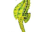 Seahorse Art Print 8x10 W...