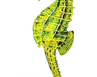 Seahorse Gouache / Watercolor Print, wildlife art, scientific illustration, Scientific Painting, seahorse wall decor, ocean wall art