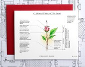 Project Rose - Blank Architecture Construction Card