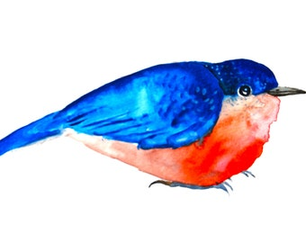 Bird Watercolor, Bluebird Painting, Original Art, Small Watercolor Painting