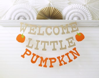 Little Pumpkin Banner - 5 inch Letters with Pumpkin - Fall Baby Shower Banner Baby Pumpkin Banner Pumpkin Baby Shower Welcome Little Pumpkin