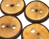 Handmade Wooden Tree Branch Buttons, Natural Wood Buttons, Sweetgum Wood, Set of 6, 1 1/2 Inches