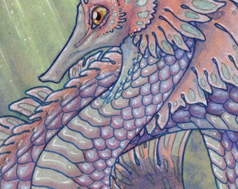 "Limited Edition Archival ACEO Print ""Opalescent Sargassum Dragon"" aquatic sea serpent seahorse ocean fantasy art"