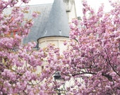 Paris Fine Art Photography – Hotel de Sens in Spring, Cherry Blossoms, Paris Wall Art, French Architecture, Large Wall Art