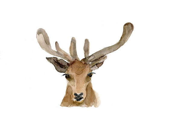 Deer Art Print, deer head watercolor print, woodland print, gift for men ,antler, fathers day, Christmas art, minimalist art, deer art