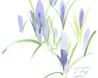 springtime, light pink and purple (crocuses and scilla), nature prints, set of watercolor cards