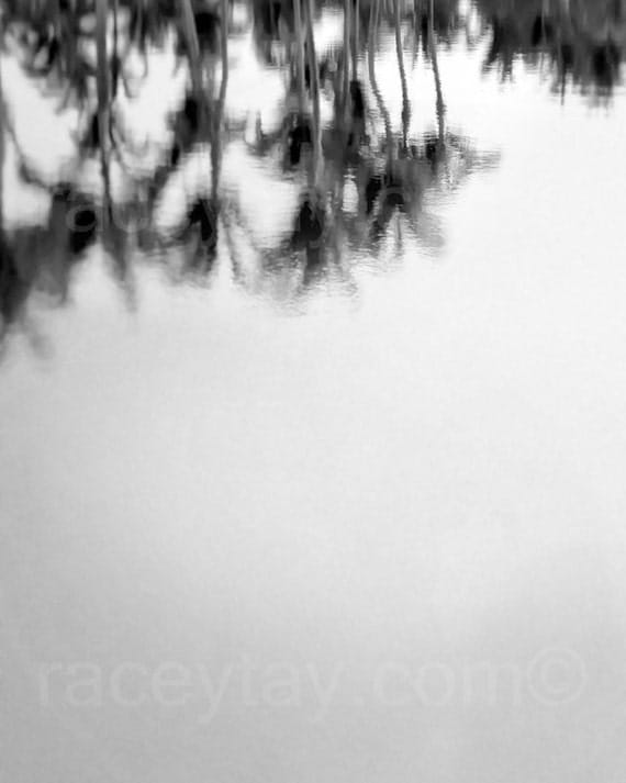 Palm Trees, Black and White Los Angeles Photography, Tropical, Beach Decor