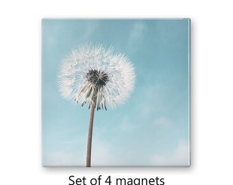 Floral magnets, dandelion magnets, set of 4 decorative magnets,  fridge magnet set, refrigerator magnets, large magnets, blue magnets